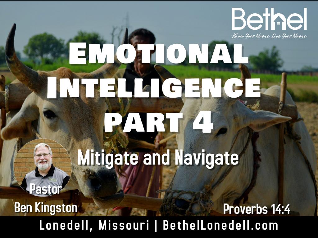Emotional Intelligence - Mitigate and Navigate